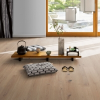 Tarkett Move Oak White Ultra Matt Lacquer