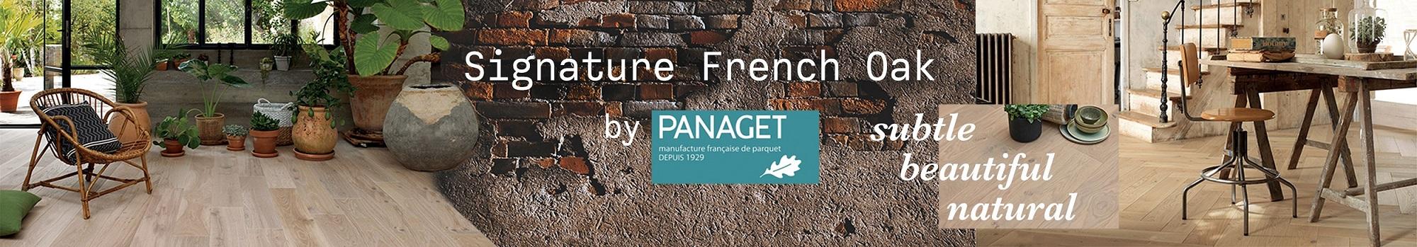 Panaget-Banner-Feb-2020-final-v2_2000_349.jpg